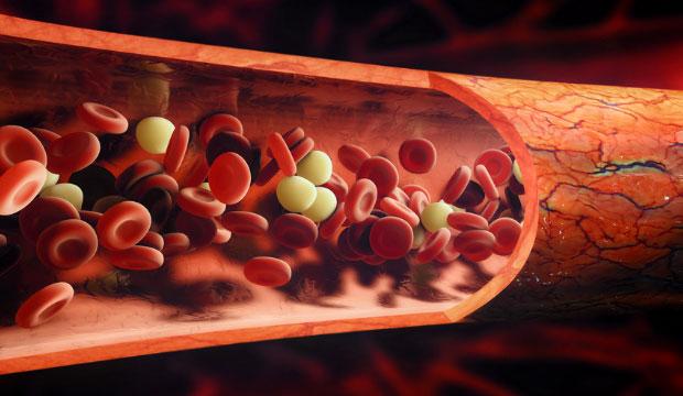 la mauvaise circulation sanguine